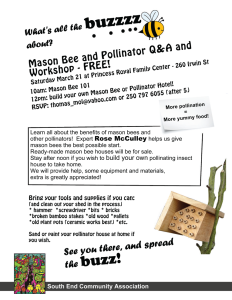 small---bee-hotel-workshop-march-21-2015