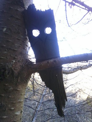 chase_river_owl (3)